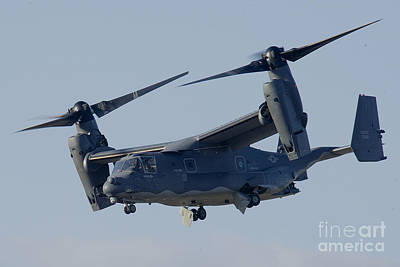 A Cv-22b Osprey Poster by Celestial Images