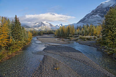 A Fall Day In Alberta Poster by Bill Cubitt