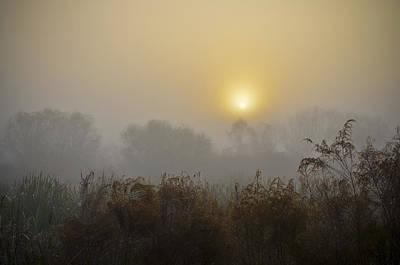 A Foggy Sunrise Poster by Carolyn Marshall