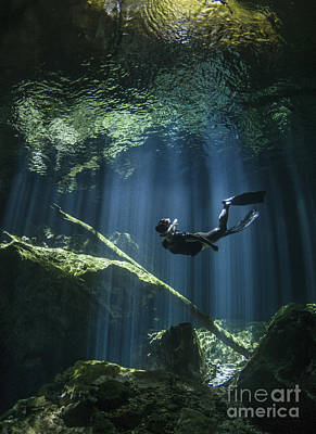 A Freediver In Taj Mahal Cenote Poster by Karen Doody