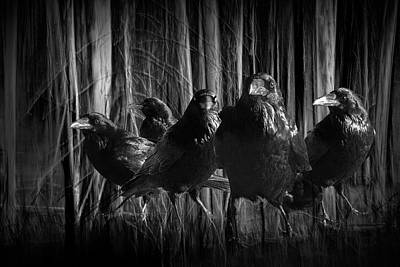 A Murder Of Crows Among The Forest Trees Poster by Randall Nyhof