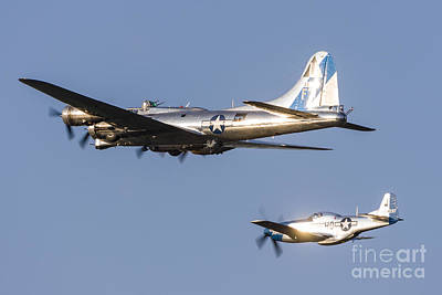 A P-51 Mustang Flies Alongside A B-17 Poster by Rob Edgcumbe