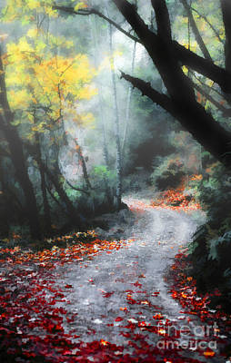 A Path In The Woods Poster by Mike Nellums