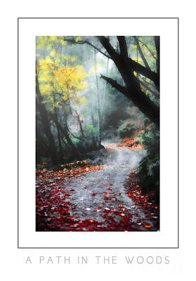 A Path In The Woods Poster Poster by Mike Nellums