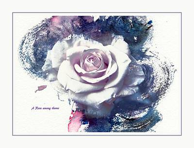 A Rose Among Thorns Poster by Athala Carole Bruckner