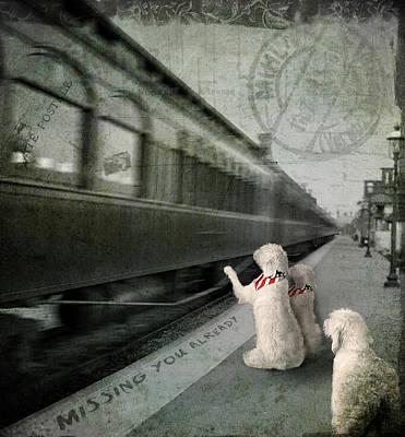 A Sad Goodbye Poster by Suni Roveto