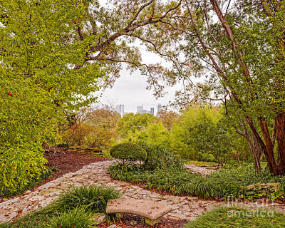 A Window To Downtown Austin From Zilker Botanical Garden - Austin Texas Hill Country Poster by Silvio Ligutti