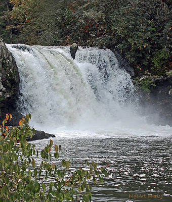 Abrams Falls Cades Cove Tn Poster by DigiArt Diaries by Vicky B Fuller