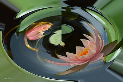Absstract Water Lily Poster by Lesa Fine