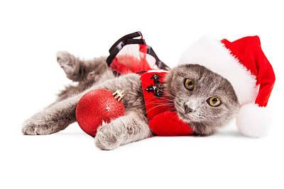 Adorable Christmas Kitten Over White Poster by Susan Schmitz