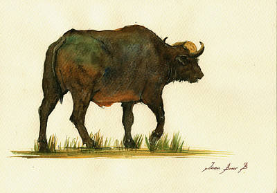 African Buffalo Watercolor Painting Poster by Juan  Bosco