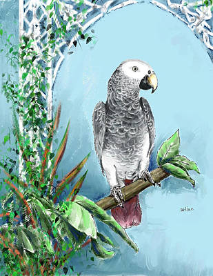 African Grey Parrot Poster by Arline Wagner