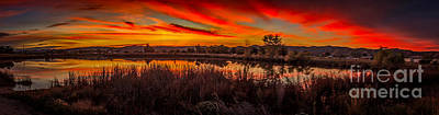 Airport Pond Sunrise Poster by Robert Bales