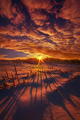 All The Things That I'd Like To Say Poster by Phil Koch