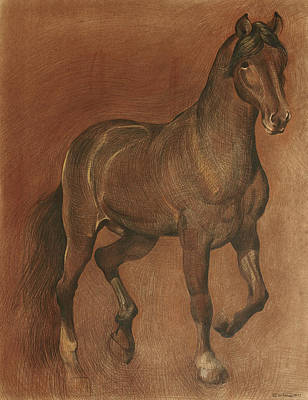 American Beauty Horse Poster by Ezartesa Art