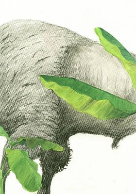 American Buffalo 2 Poster by Juan Bosco