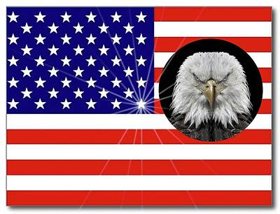 American Flag Poster by Manfred Lutzius