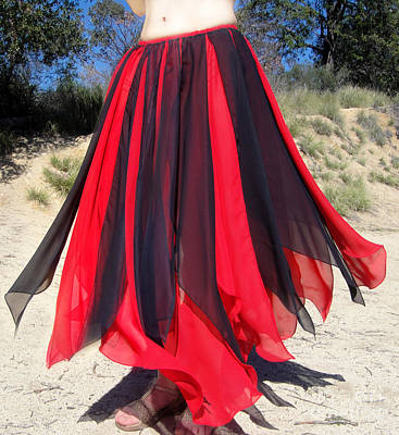 Ameynra Belly Dance Skirt. Red-black 24 Poster by Sofia Goldberg
