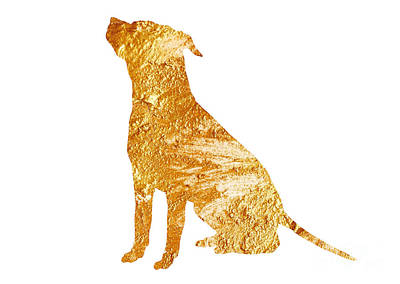 Amstaff Gold Silhouette Large Poster Poster by Joanna Szmerdt