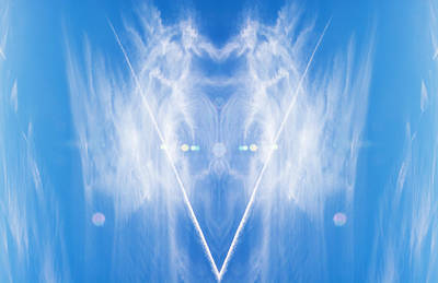 Angel Wings Poster by Pelo Blanco Photo