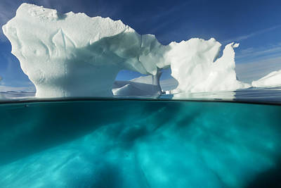 Antarctica, Underwater View Of Arched Poster by Paul Souders