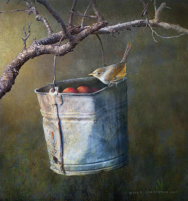 Apple Bucket, House Wren Poster by R christopher Vest