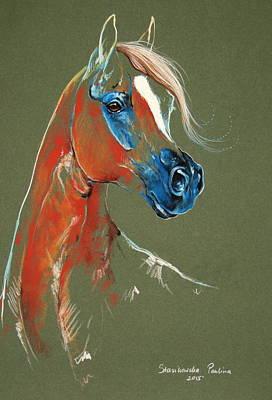 Arabian Horse Pastel Poster by Paulina Stasikowska