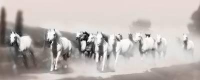 Arabian Mares - Home Run  Poster by ELA-EquusArt