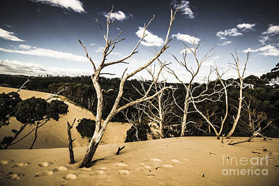 Australian Sand Plateau Poster by Jorgo Photography - Wall Art Gallery
