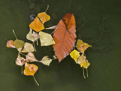 Autumn 1 Poster by Kenton Smith