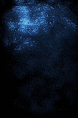 Autumn 2015 Trees By Moonlight Pa 03 Vertical Poster by Thomas Woolworth