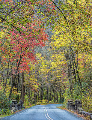 Autumn Drive Through Pisgah National Forest Poster by Donnie Whitaker