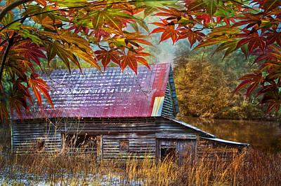Autumn Embrace Poster by Debra and Dave Vanderlaan