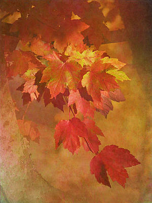 Autumn Glory Poster by Angie Vogel