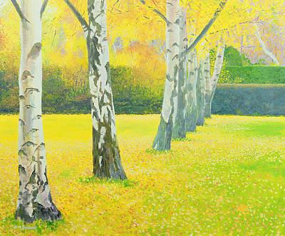 Autumn Gold Poster by William Ireland