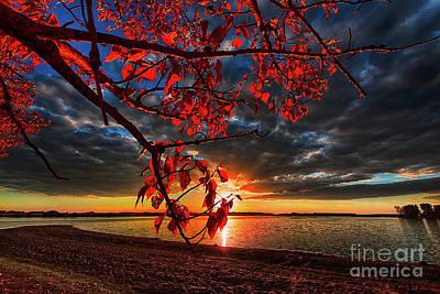 Autumn Illumination Poster by Ian McGregor
