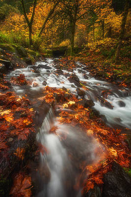 Autumn In The Gorge Poster by Darren  White