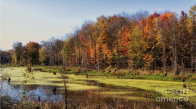 Autumn In The Wetlands Poster by Susan Grube