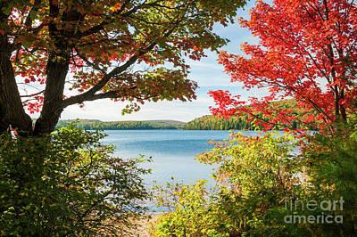 Autumn Lake Poster by Elena Elisseeva