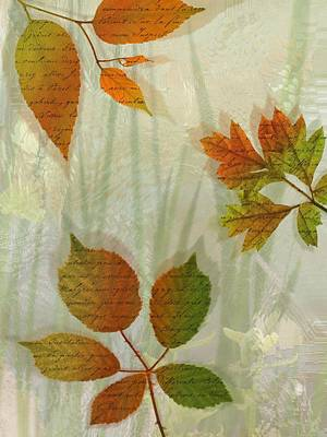 Autumn Leaves-2 Poster by Nina Bradica