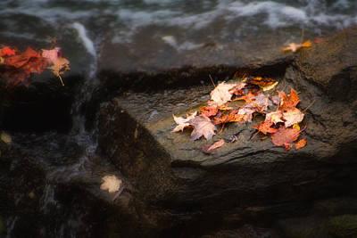 Autumn Leaves Poster by Tom Mc Nemar