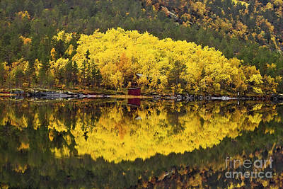 Autumn Reflections 1 Poster by Heiko Koehrer-Wagner