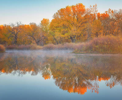 Autumn Reflections Poster by Darren White