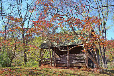 Autumn Shed  Poster by Savannah Gibbs