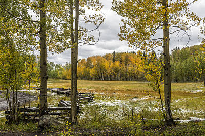 Autumn Snow Fall Poster by Jon Glaser