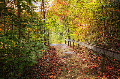 Autumn Trails Poster by Debra and Dave Vanderlaan