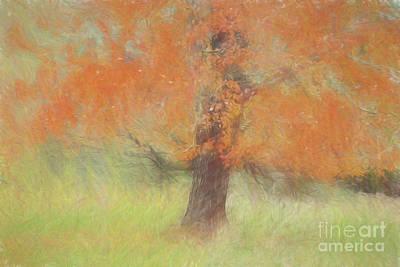 Autumn Tree # 1 Poster by Geraldine DeBoer