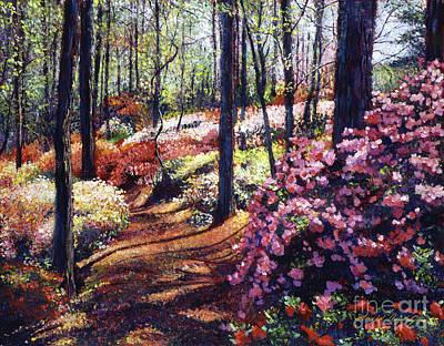 Azalea Forest Poster by David Lloyd Glover