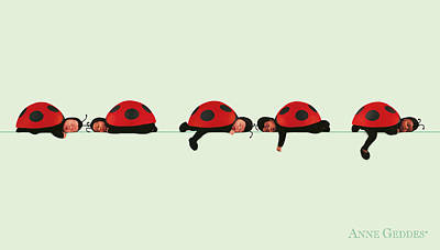Baby Lady Bugs Poster by Anne Geddes