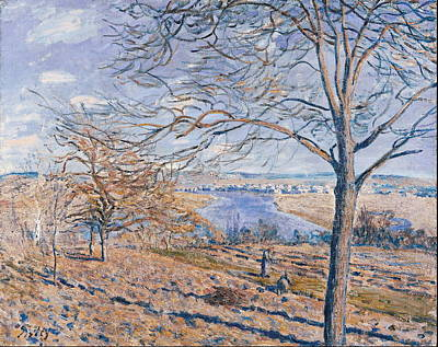 Banks Of The Loing Autumn Effect Poster by Alfred Sisley